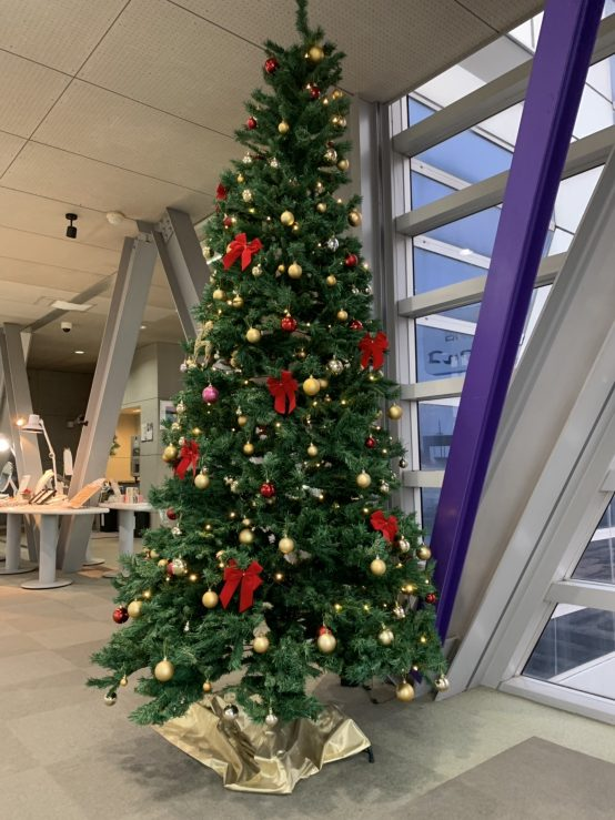 ファルコ クリスマスイベント!/Pearl Falco Christmas event !