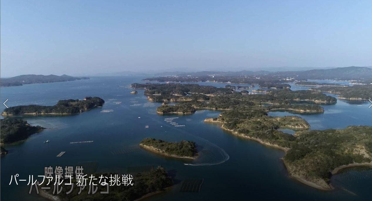 「パールファルコ‐新たな挑戦」 三重テレビ「Mieライブ」で放送
